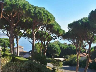 SAINTE MAXIME T2 APARTMENT FOR RENT